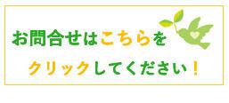 ワンダーお問合せ.jpg